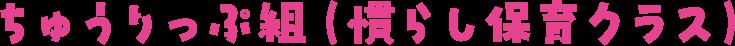 ちゅうりっぷ組(慣らし保育クラス)